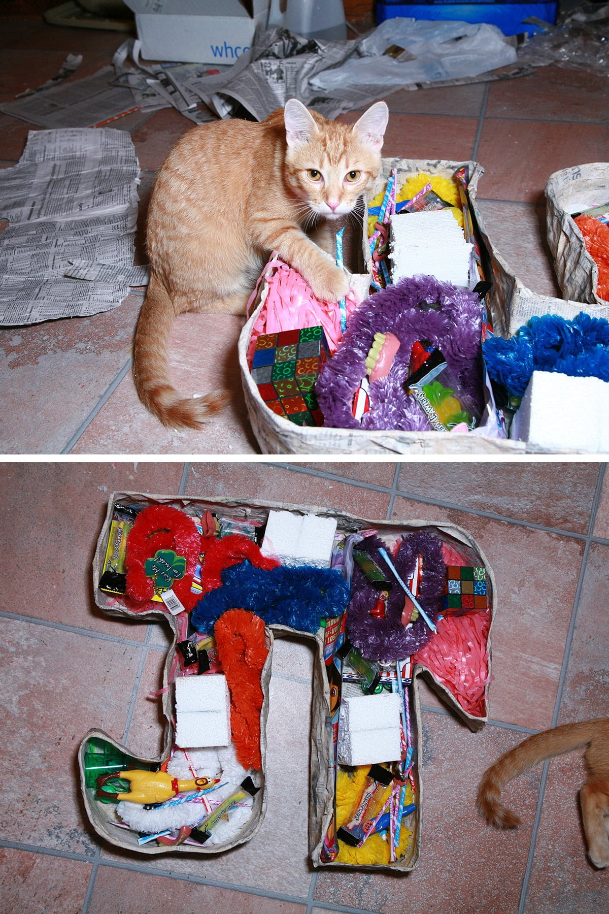 "A two part image, showing the pinata being stuffed with goodies. An orange cat is ""helping""."