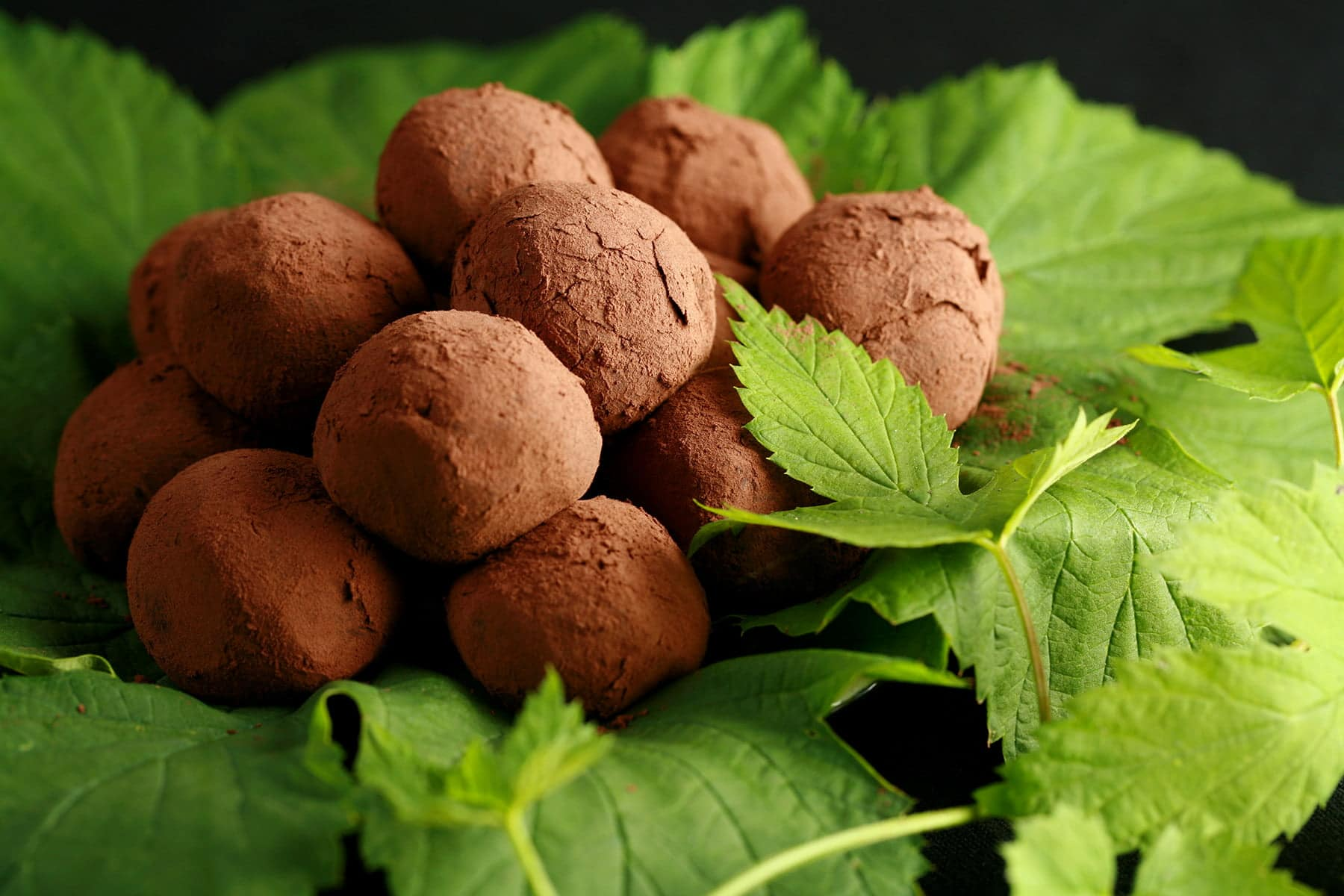 A mound of hop flavored dark chocolate truffles rests on a pile of hop leaves and hop bines.
