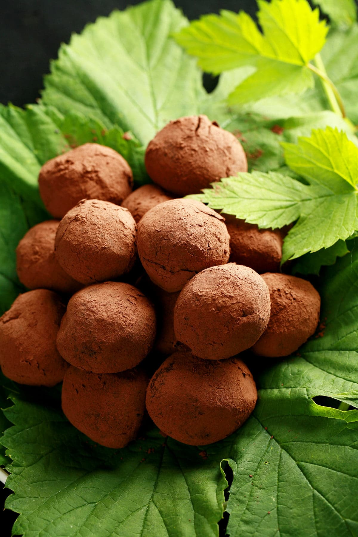 A mound of dark chocolate truffles rests on a pile of hop leaves and hop bines.