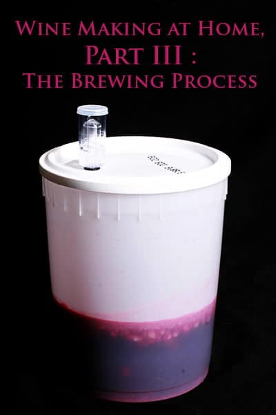 Wine Making at Home, Part III : The Brewing Process.