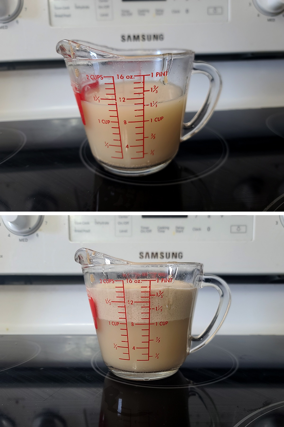 Yeast, honey, and water in a glass measuring cup.