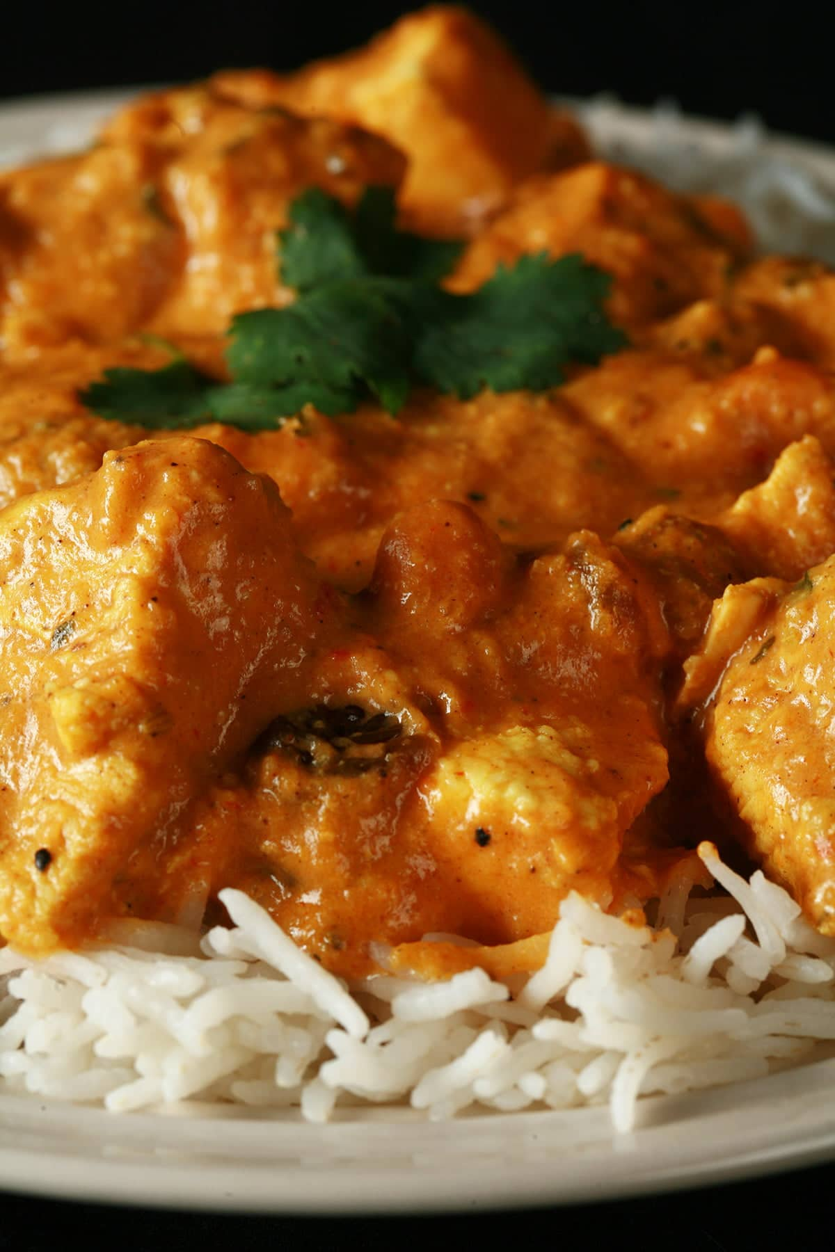 A plate with rice smothered in a creamy Chicken Curry.