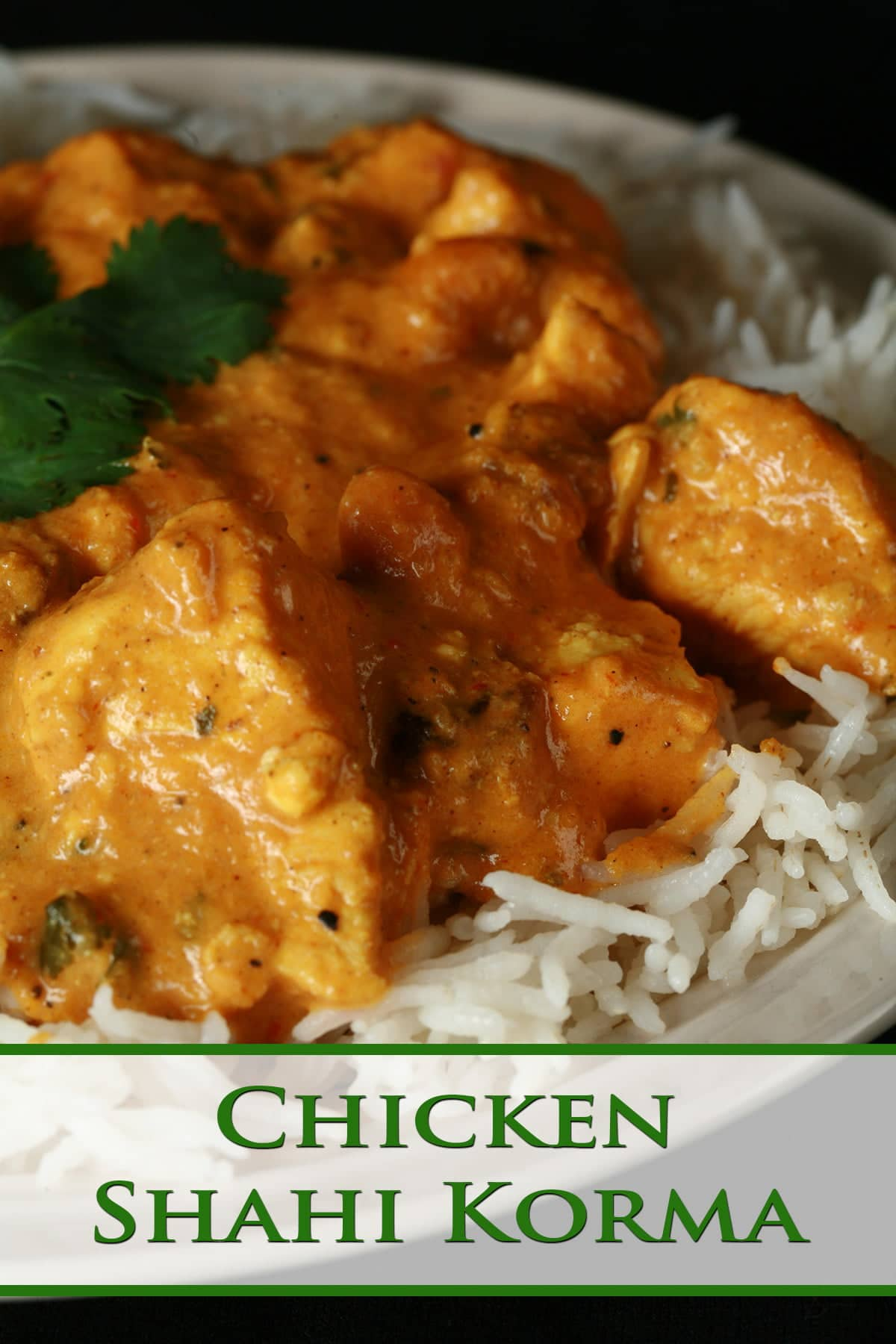 A plate with rice smothered in a creamy Chicken Korma.