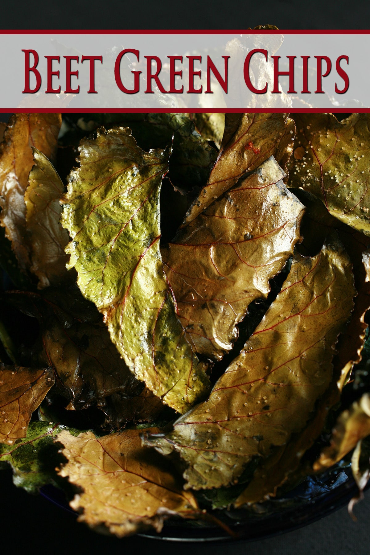 A bowl of roasted beet green chips - deep shades of greens and browns, with beautiful red veining.