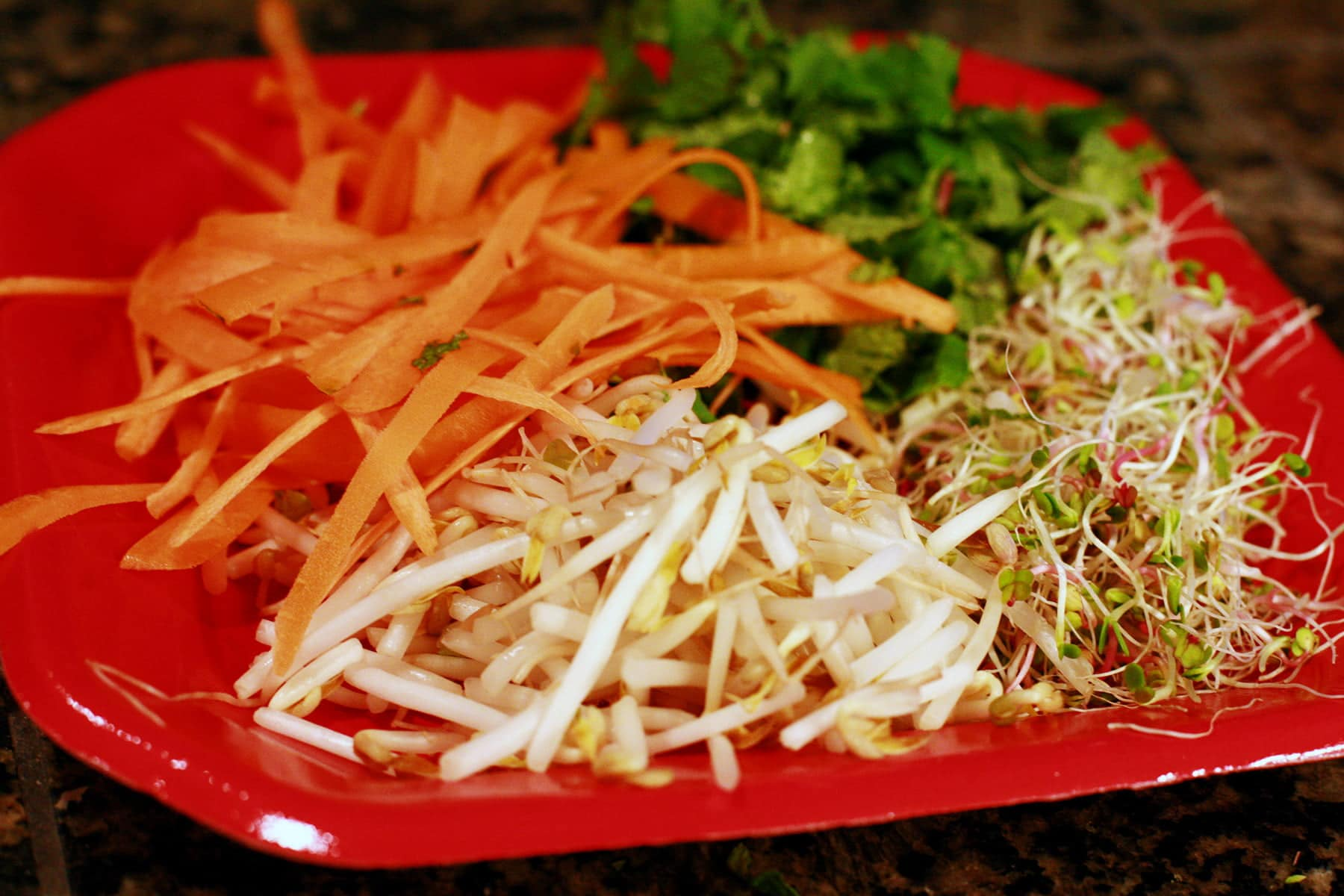 A red plate holds sections of fillings: ribbons of carrots, bean sprouts, cilantro and mint.