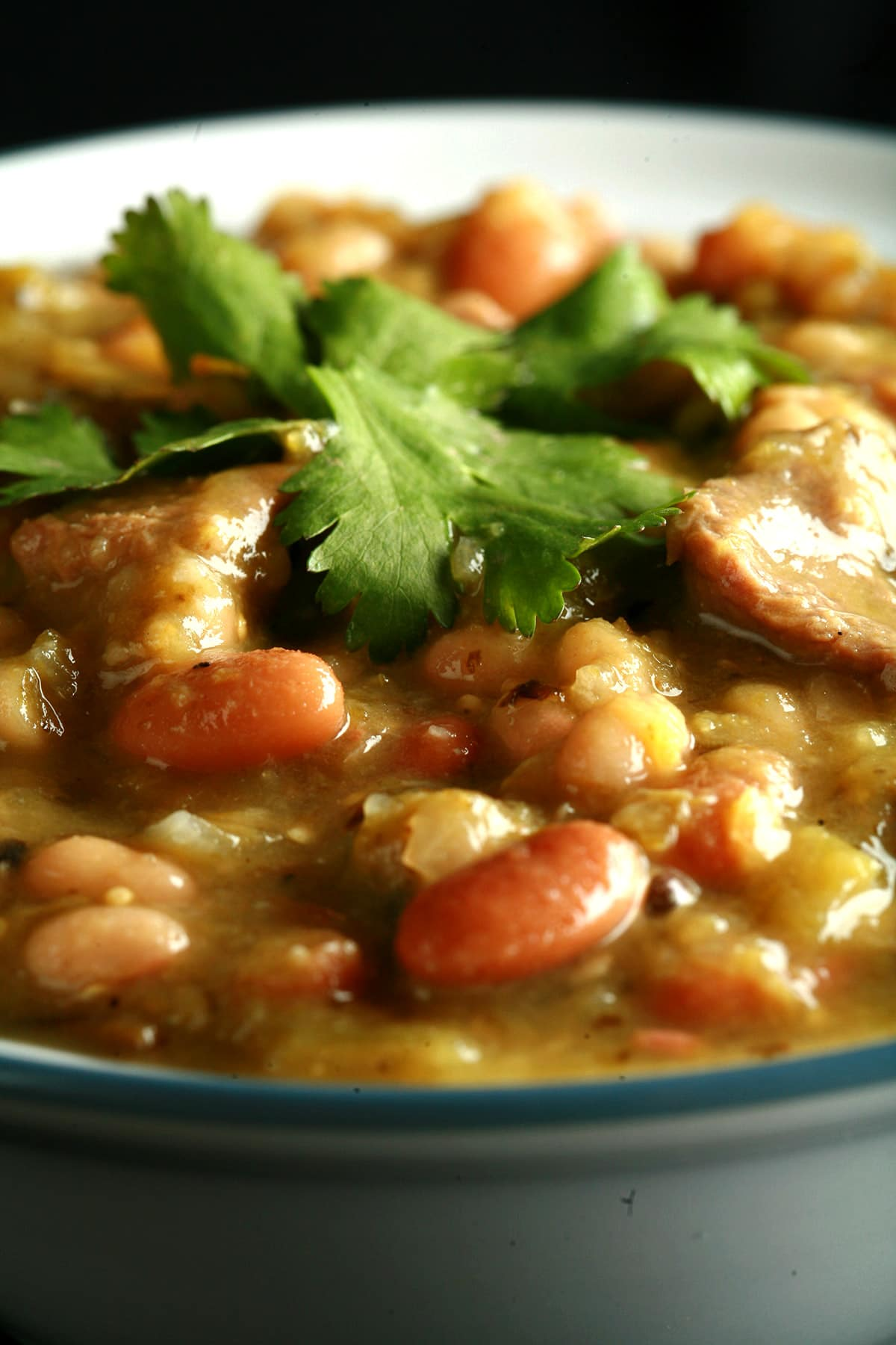 A close up view of a bowl of roasted chili verde.