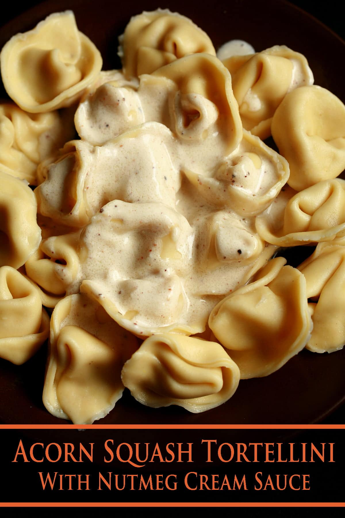 A plate of Acorn Squash Tortellini, topped with nutmeg cream sauce.