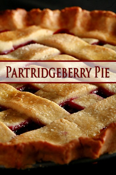 Partridgeberry Pie