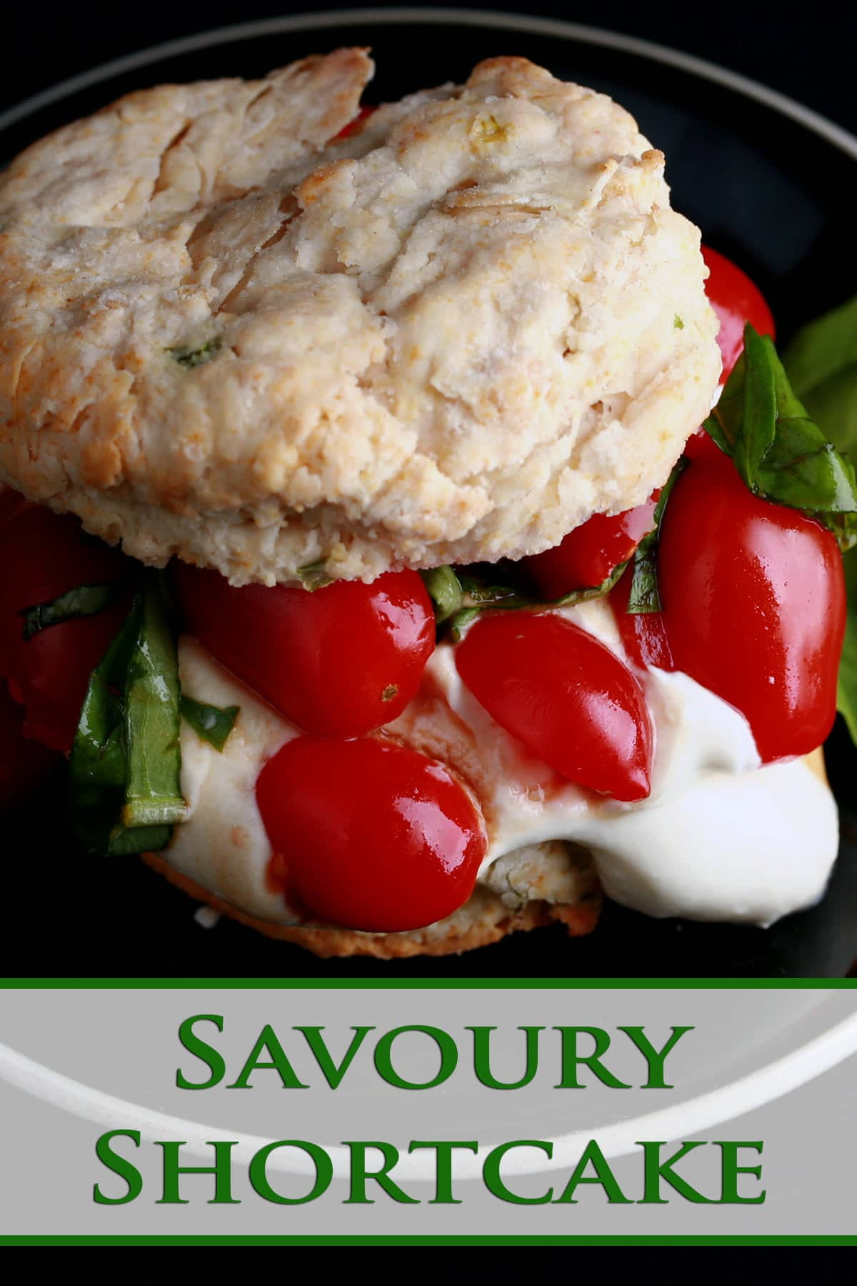 """Savoury Tomato Shortcake: A baking powder biscuit """"sandwich"""" on a small black plate.  The biscuit has soft white cheese, cherry tomatoes, and fresh basil as its filling."""