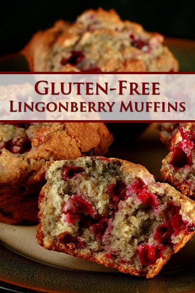 Gluten-Free Lingonberry Muffins