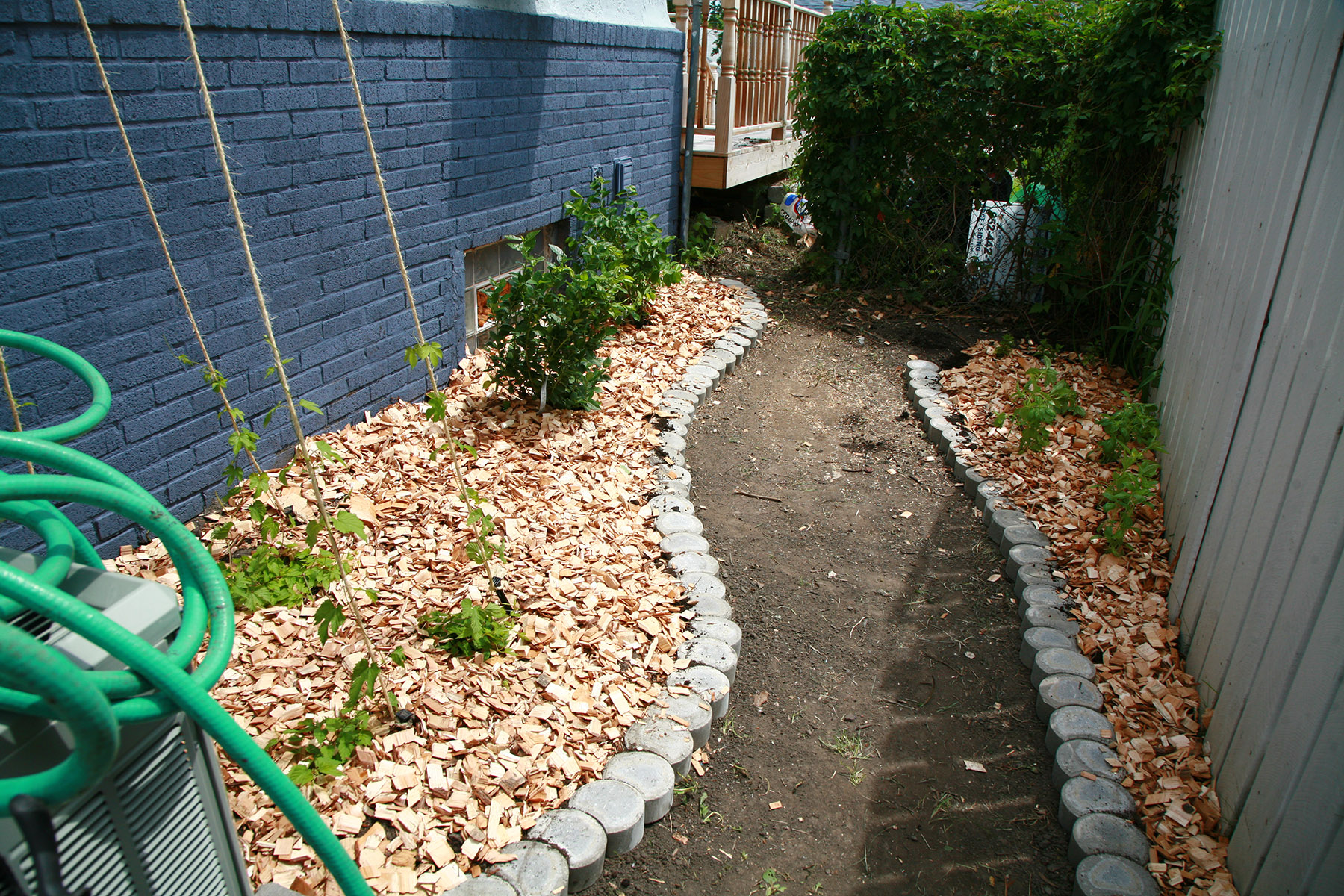 Curved bricks separating the dirt path from strawberry patches