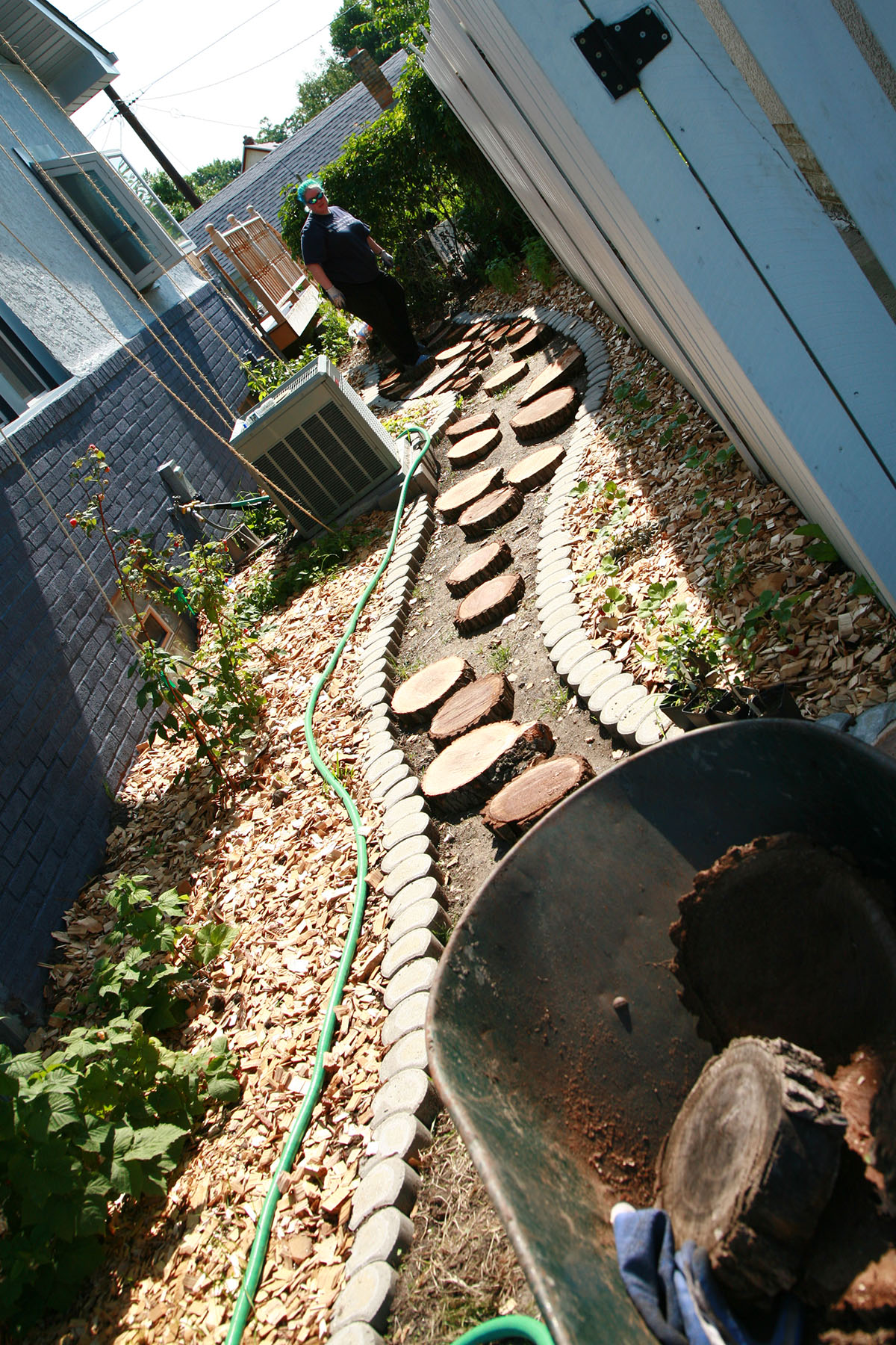 Slices of black walnut are placed along the dirt path.