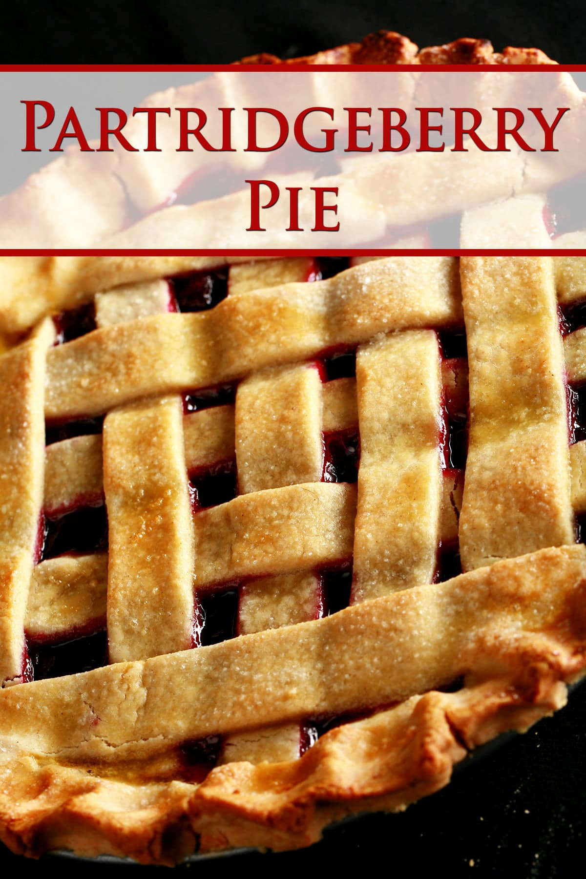 A close up view of a partridgeberry pie with a lattice crust.