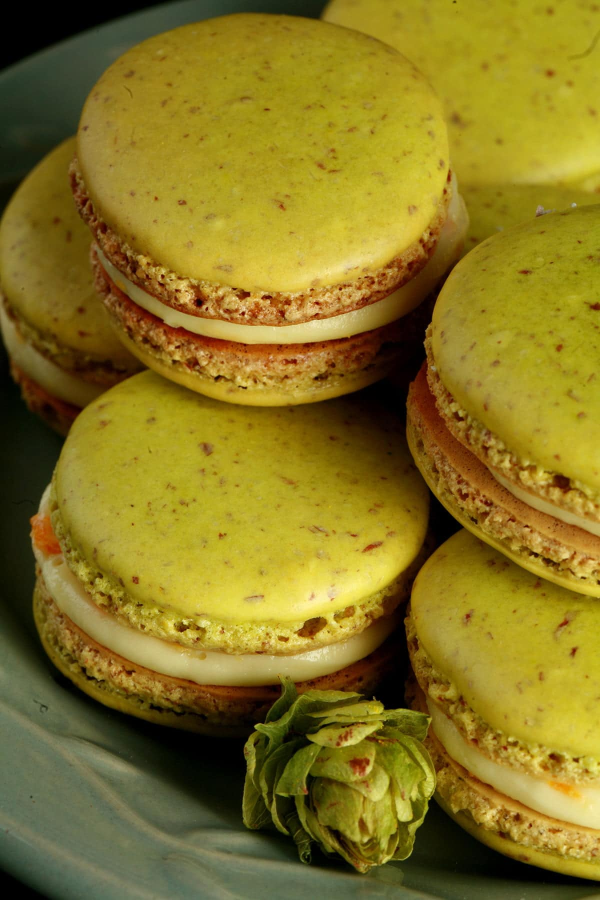 A small green plate is piled high with bright lime green Citrus Hop French Macarons. There is a fresh hop flower on the plate, and bits of orange zest visible in the filling of the macarons.