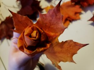 An orange and yellow maple leaf is held up behind the rose that has been forming over the past few steps.