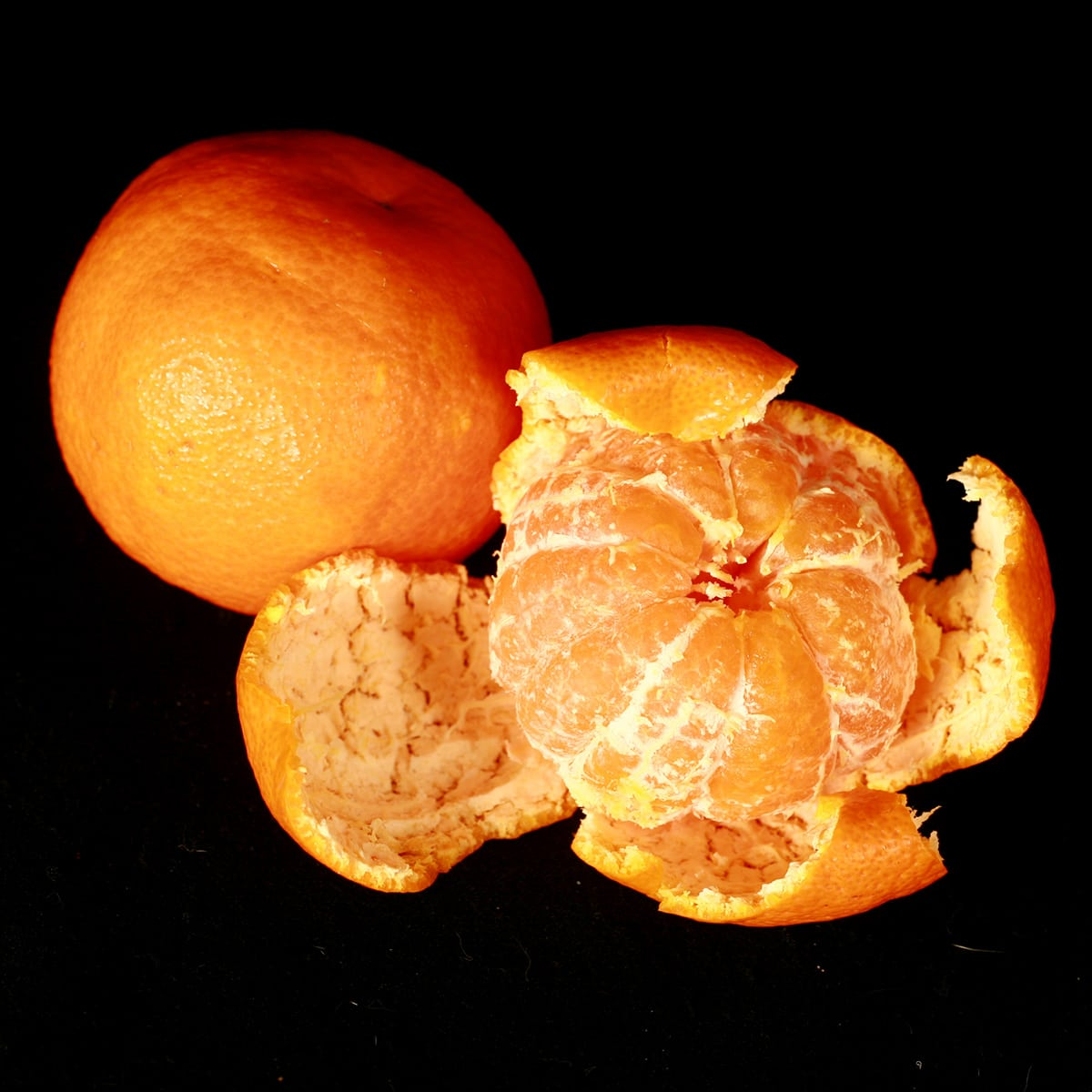 2 California Satsuma oranges, one peeled.
