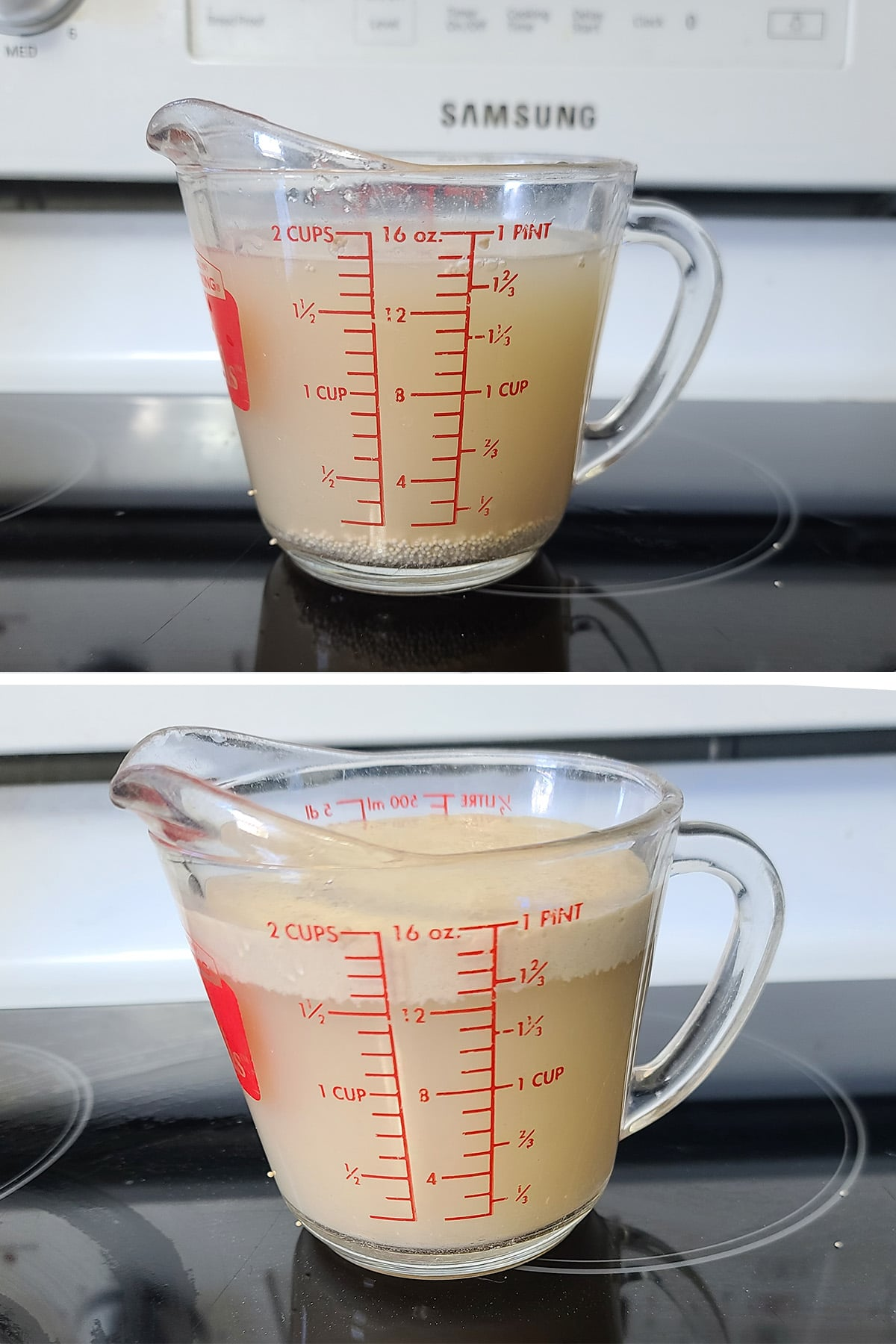 Yeast rising in a measuring cup of water.