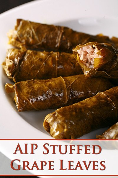 AIP Stuffed Grape Leaves - Dolmades - AIP and Paleo