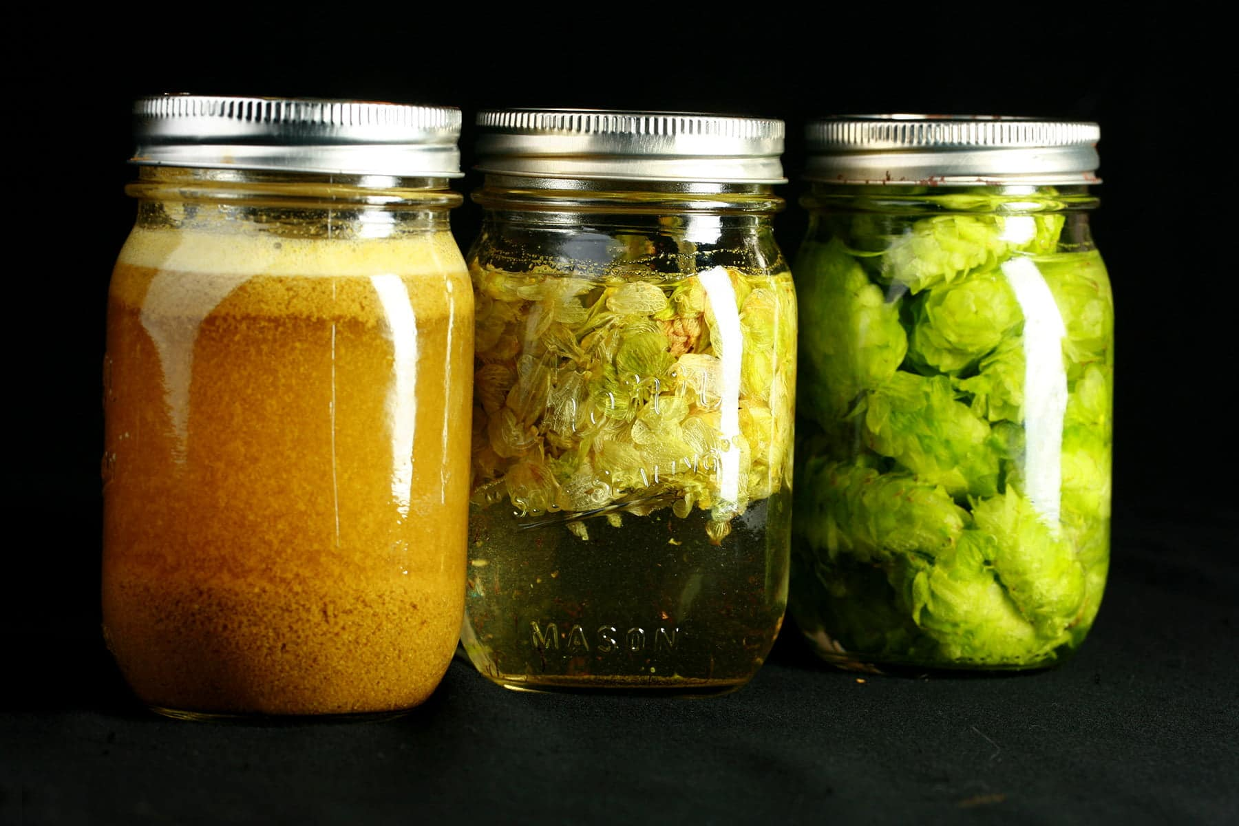 3 mason jars holding extracts being made from the 3 different forms of hop. The first with pellets is orange and cloudy. The middle uses dried leaves, which are floating at the top of the clear, pale green liquid. The final jar holds bright green fresh hop flowers suspended in clear liquid.