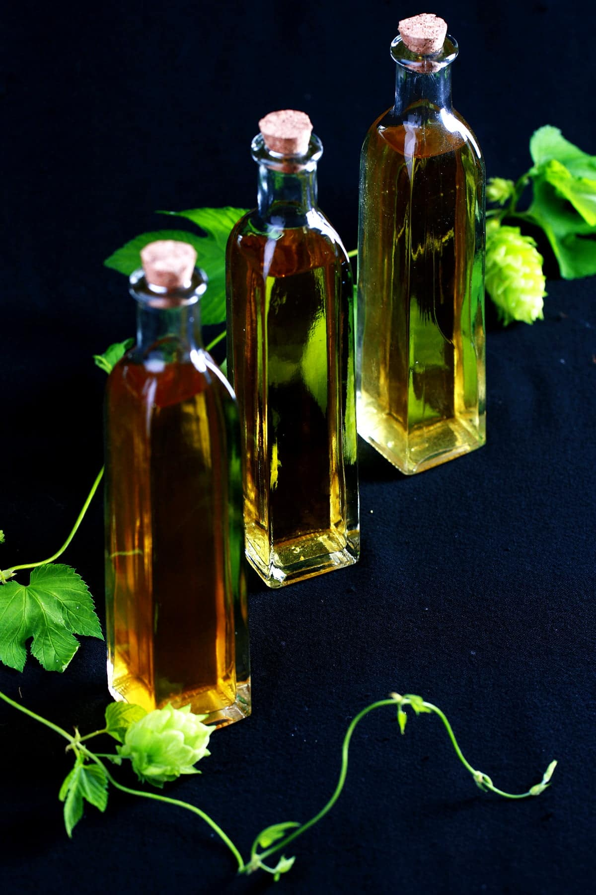 3 tall, skinny glass bottles of homemade hop extract, along with a piece of hop bine.