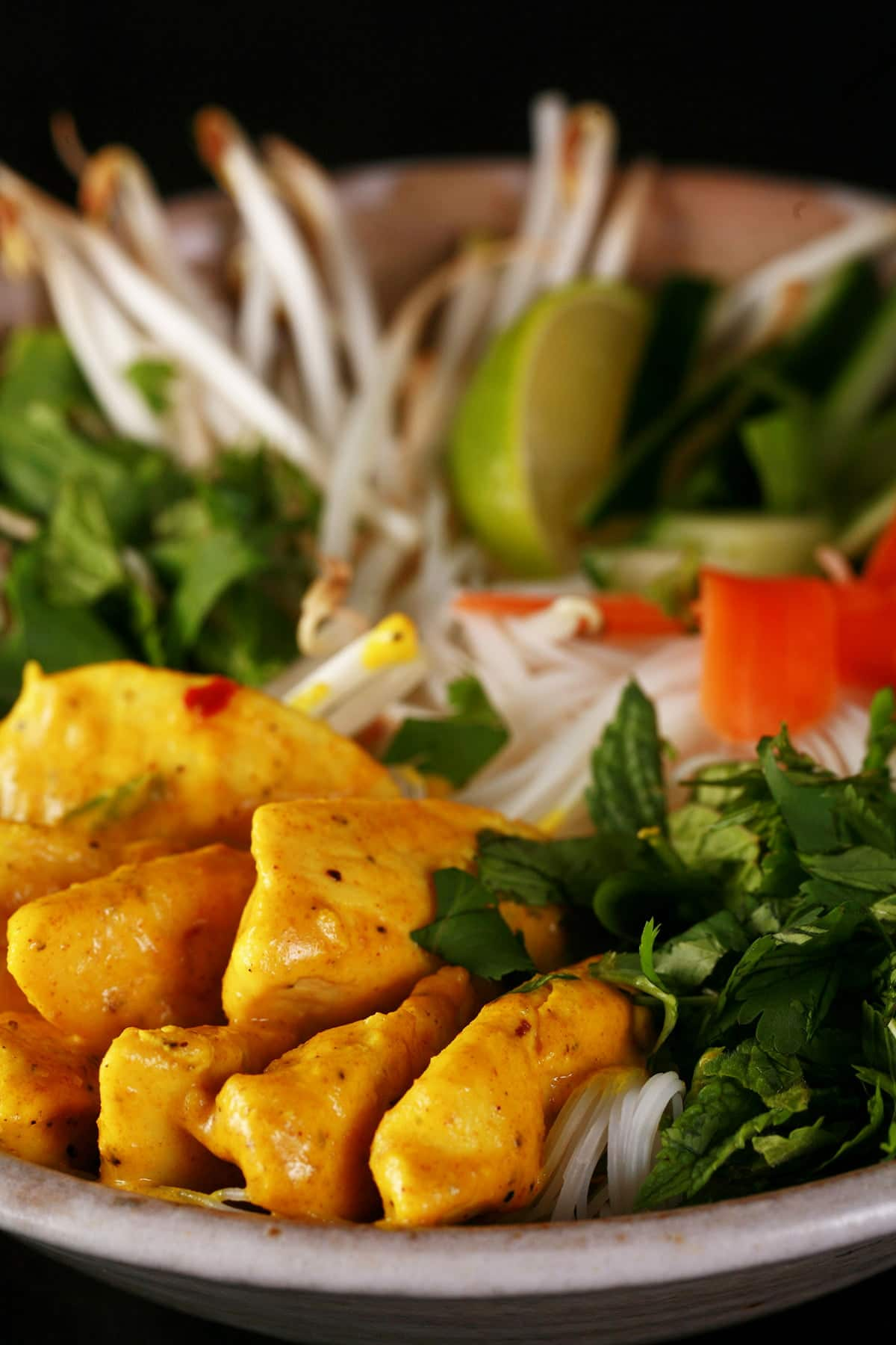 A close up view of a bowl of curried chicken Vietnamese noodle salad. Thin vermicelli noodles are visible under an arrangement of curred chicken pieces, cilantro and mint, carrot ribbons, bean sprouts, and lime wedges.