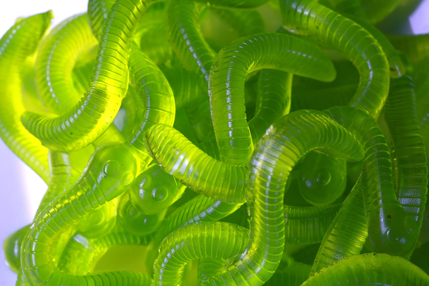 A white plate with a pile of bright green, dill pickle gummy worms on it.