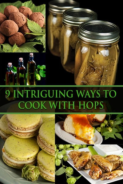 9 Intriguing Ways to Cook with Hops!