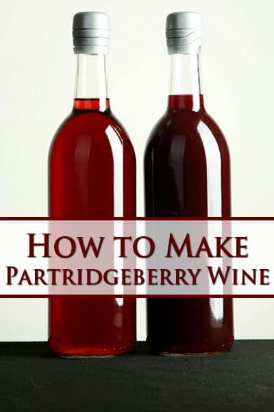 Partridgeberry Wine