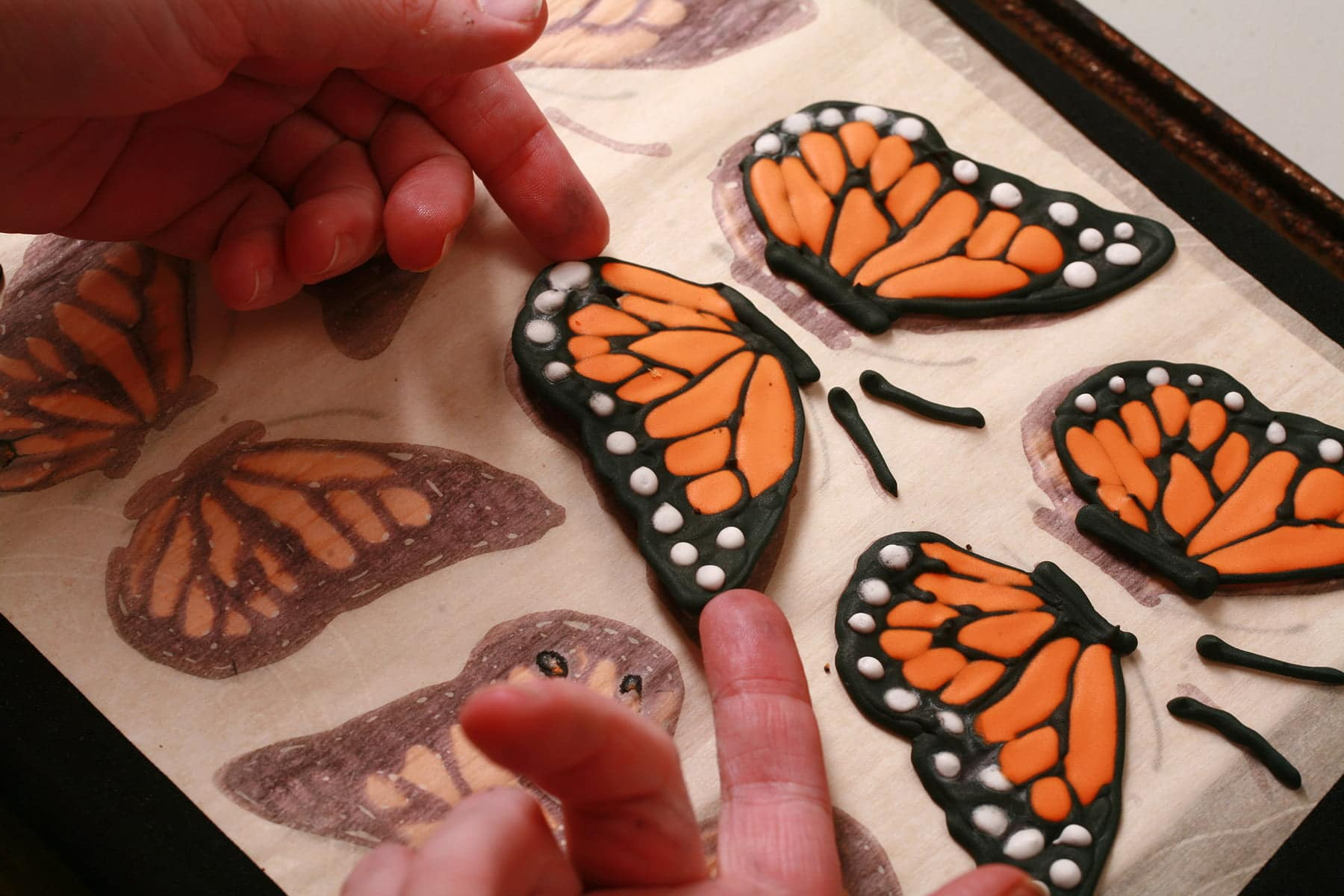 Two fingers gently lift a hardened frosting butterfly wing from the parchment lined baking sheet.