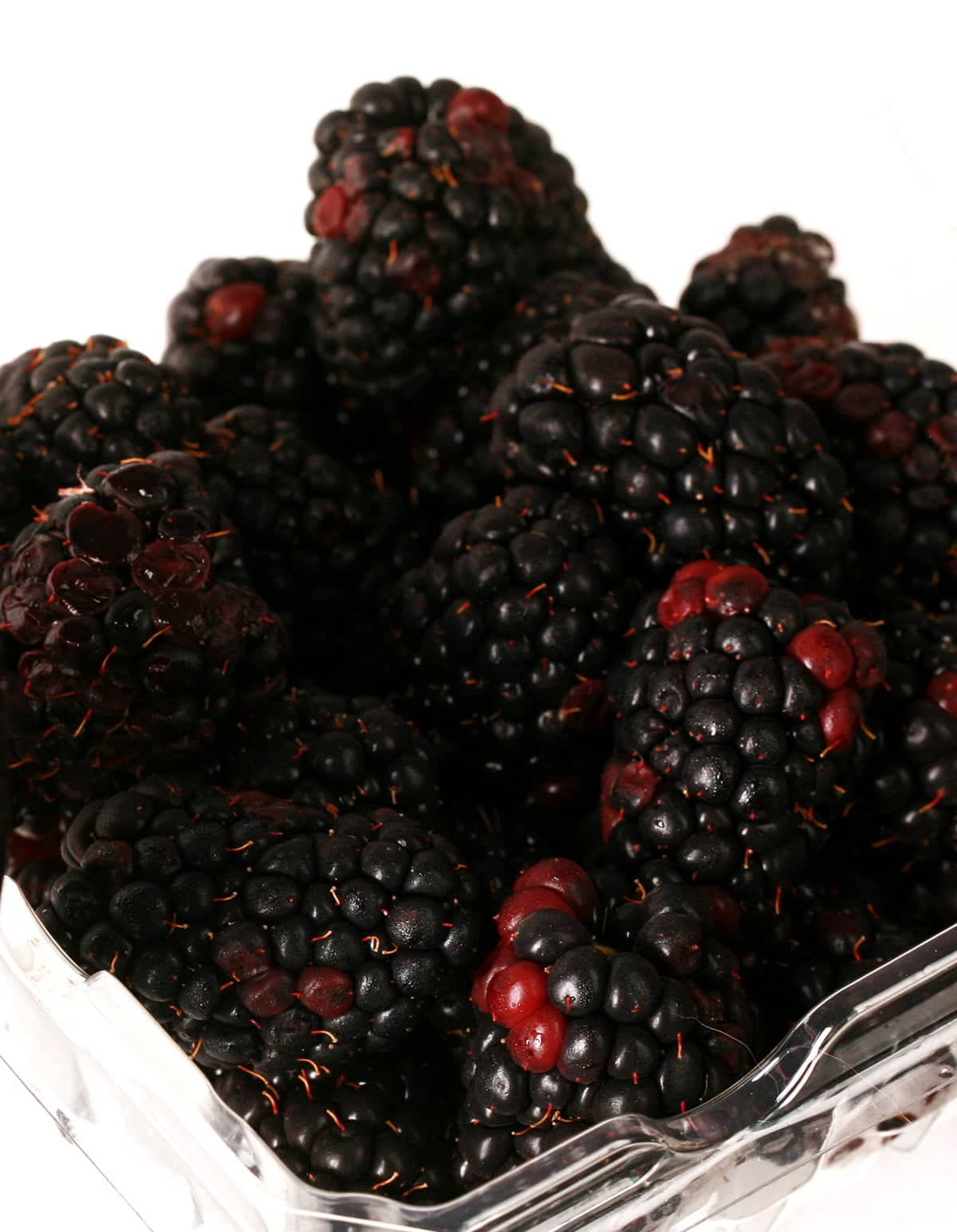 A tray of fresh blackberries in front of a white background.