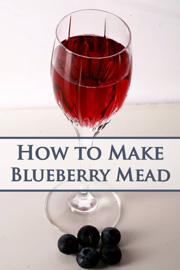 "Glass of light purple wine, with ""How to make Blueberry Mead"" superimposed."