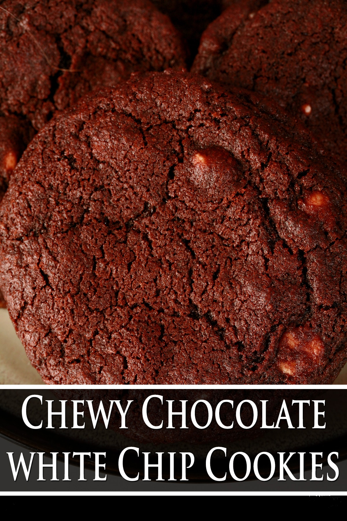 A close up view of a chewy chocolate cookie with white chocolate chips.