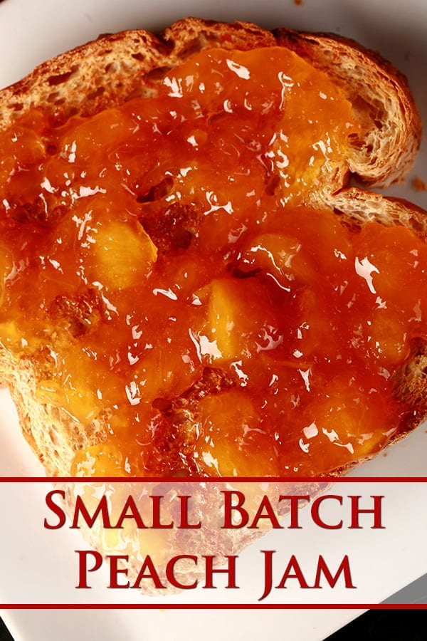 Close up photo of a piece of toast, spread with a chunky orange coloured jam