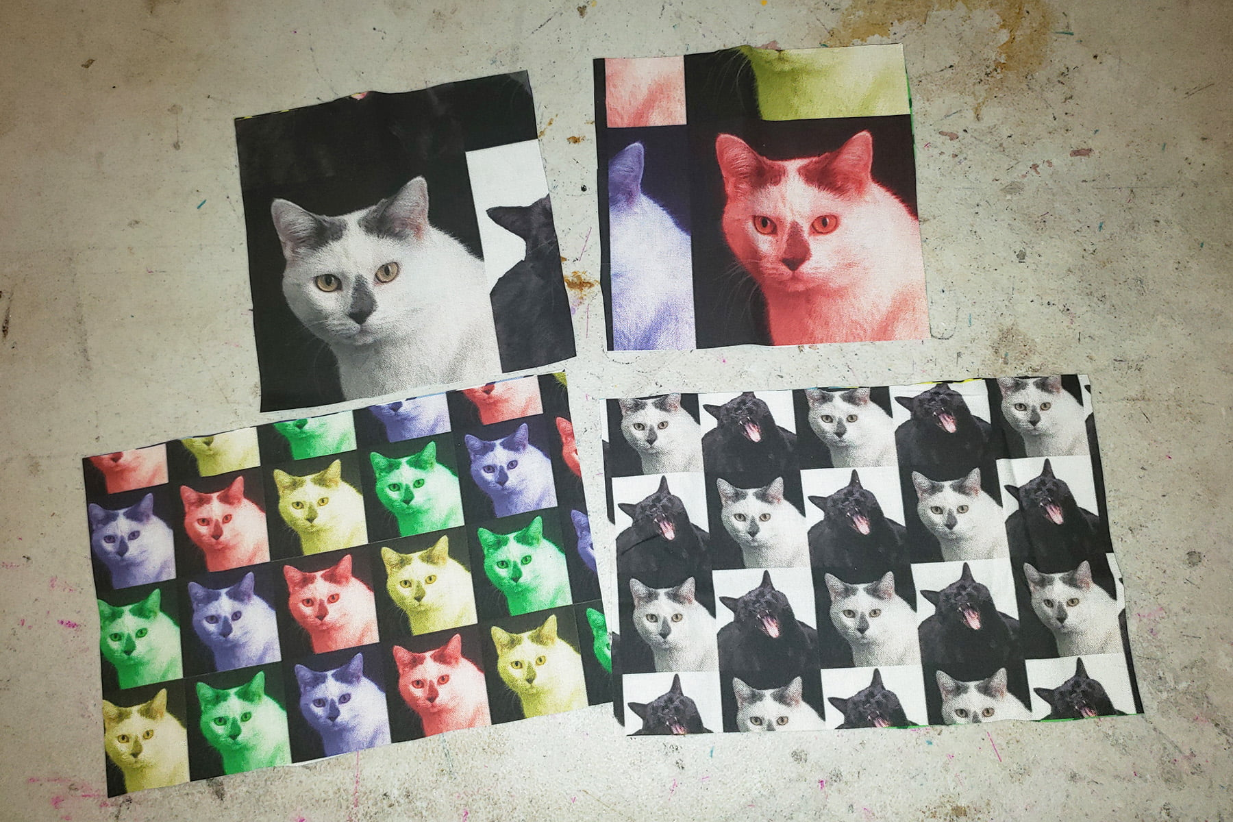 Photo of a selection of fabrics featuring black and white cats