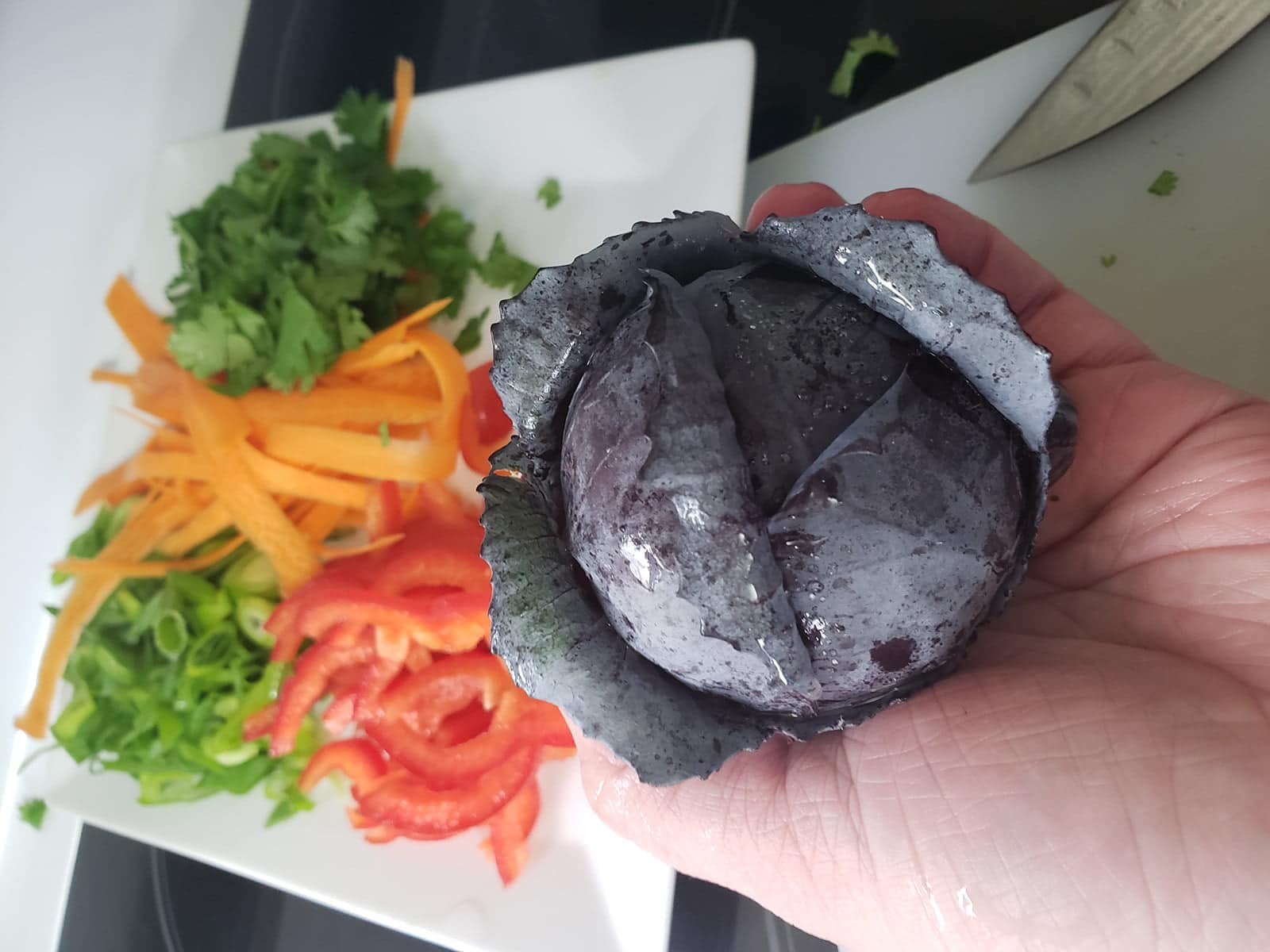 A hand holds a very small head of purple cabbage. In the background is a plate of prepared veggies: thinly sliced red pepper, ribbons of carrots, sliced green onions, and chopped cilantro.
