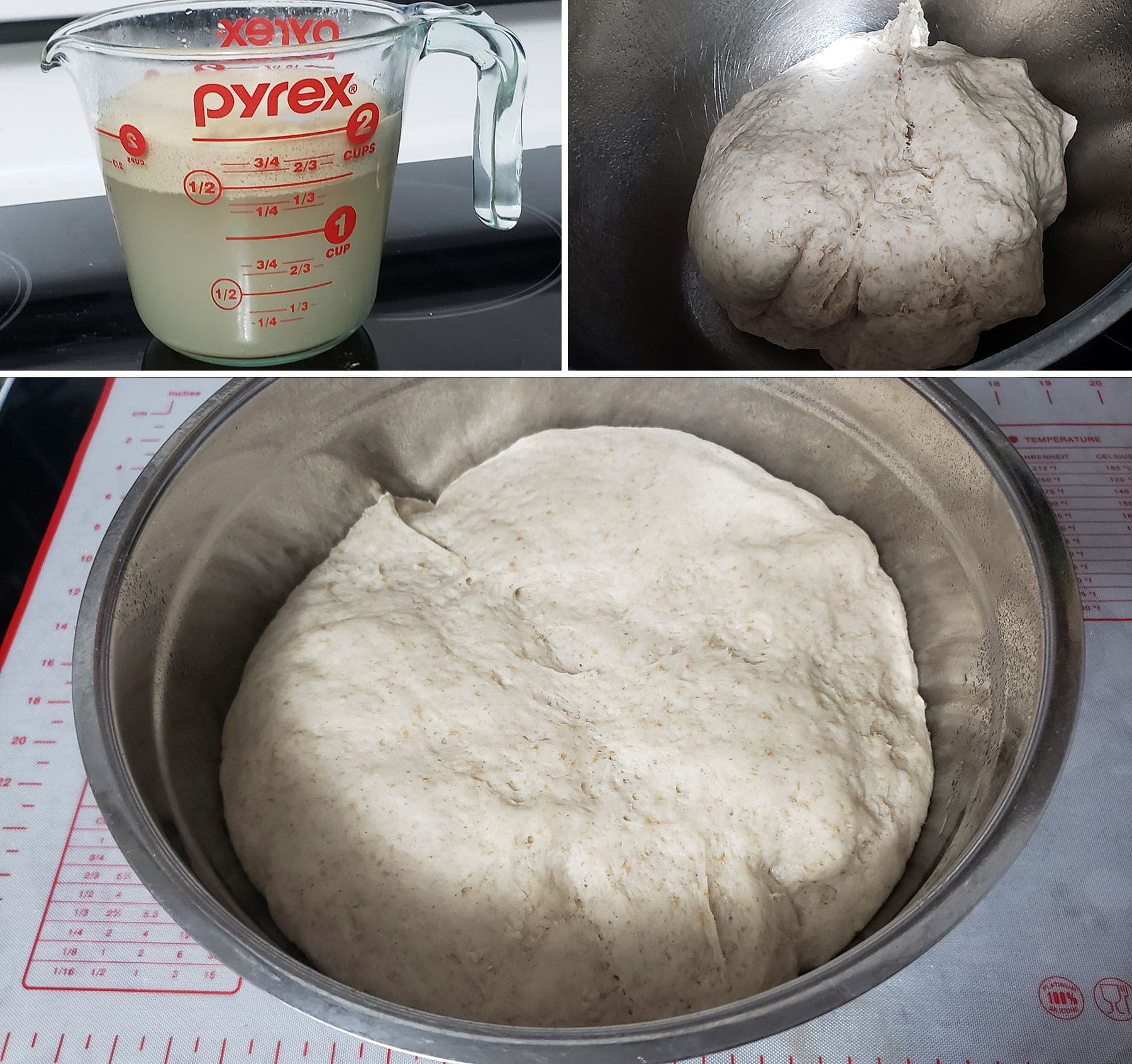 A 3 photo collage showing the progression of the dough. The first image shows yeast growing in a glass measuring cup of water, the second shows the newly kneaded dough. The final photo shows the dough after it has doubled in size from rising.
