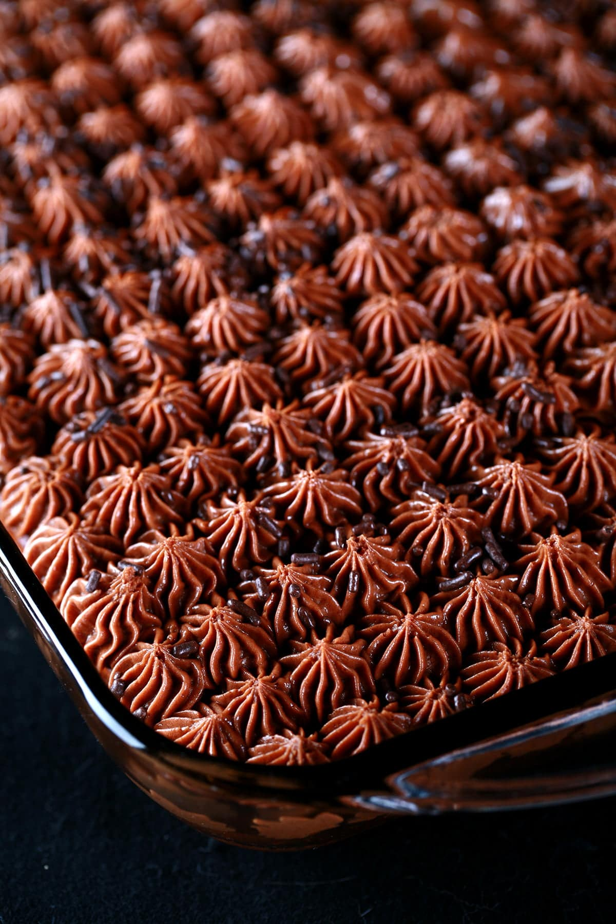 Replica Deep N Delicious Cake: A pan of chocolate cake, with creamy chocolate stars piped all over it, topped with chocolate sprinkles.