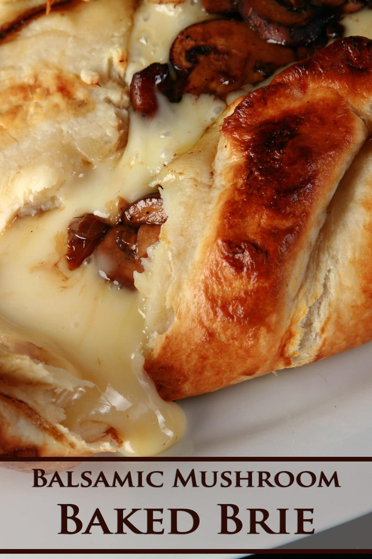 A balsamic mushroom baked brie is broken open, with melted cheese and sauteed mushrooms oozing out onto a white plate.