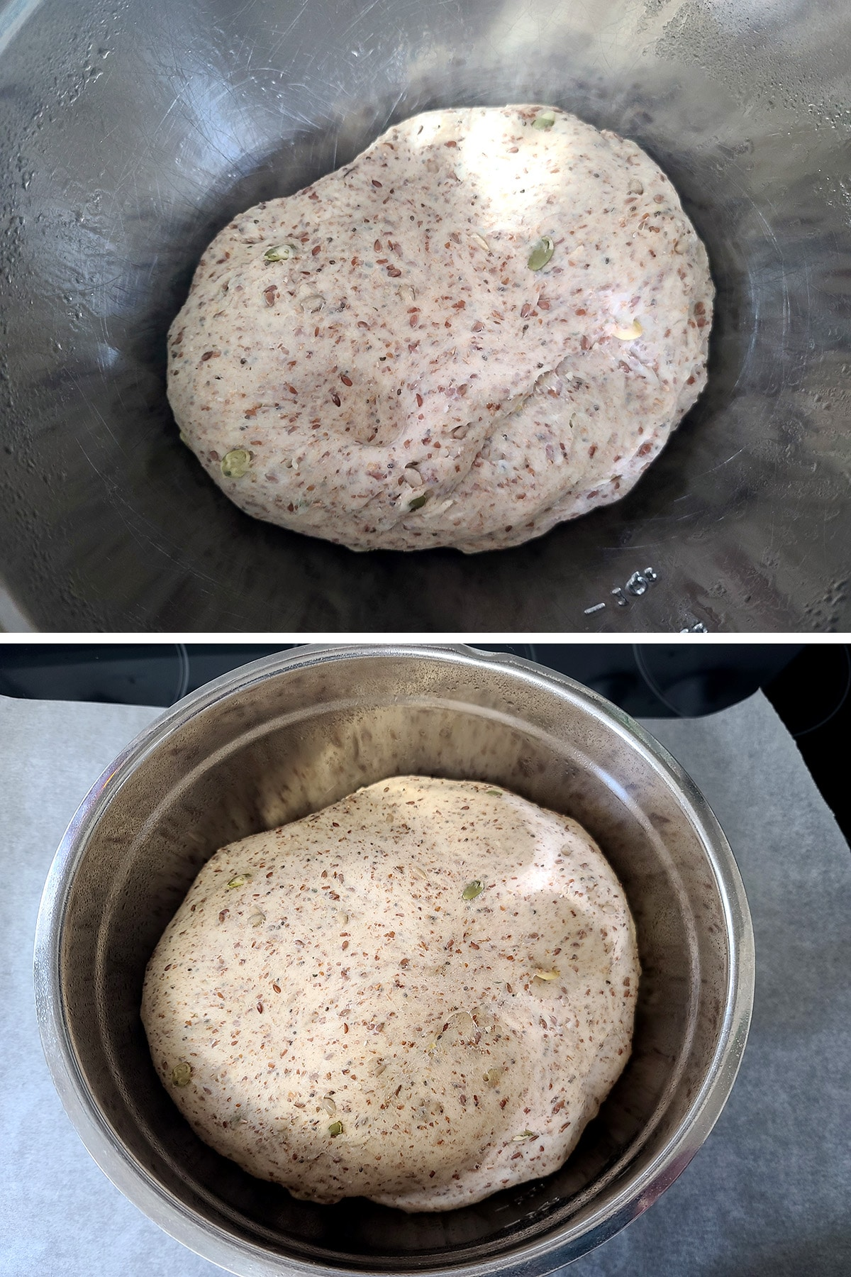 A two part image showing the seeded whole wheat bagel dough in a metal mixing bowl, before and after rising. The dough in the second photo is twice the volume of the dough in the first photo.